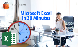 Microsoft Excel in 30 Minutes e-Learning